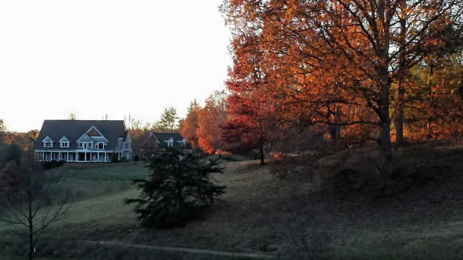 house-in-fall